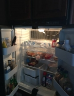 2007_grandrapids-mi-fridge